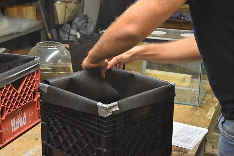 آمادهسازی جعبه برای کاشت زعفران