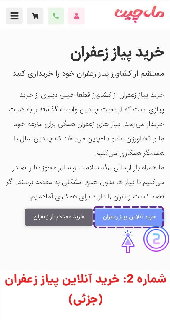 خرید آنلاین پیاز زعفران