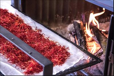 خشک کردن سنتی زعفران