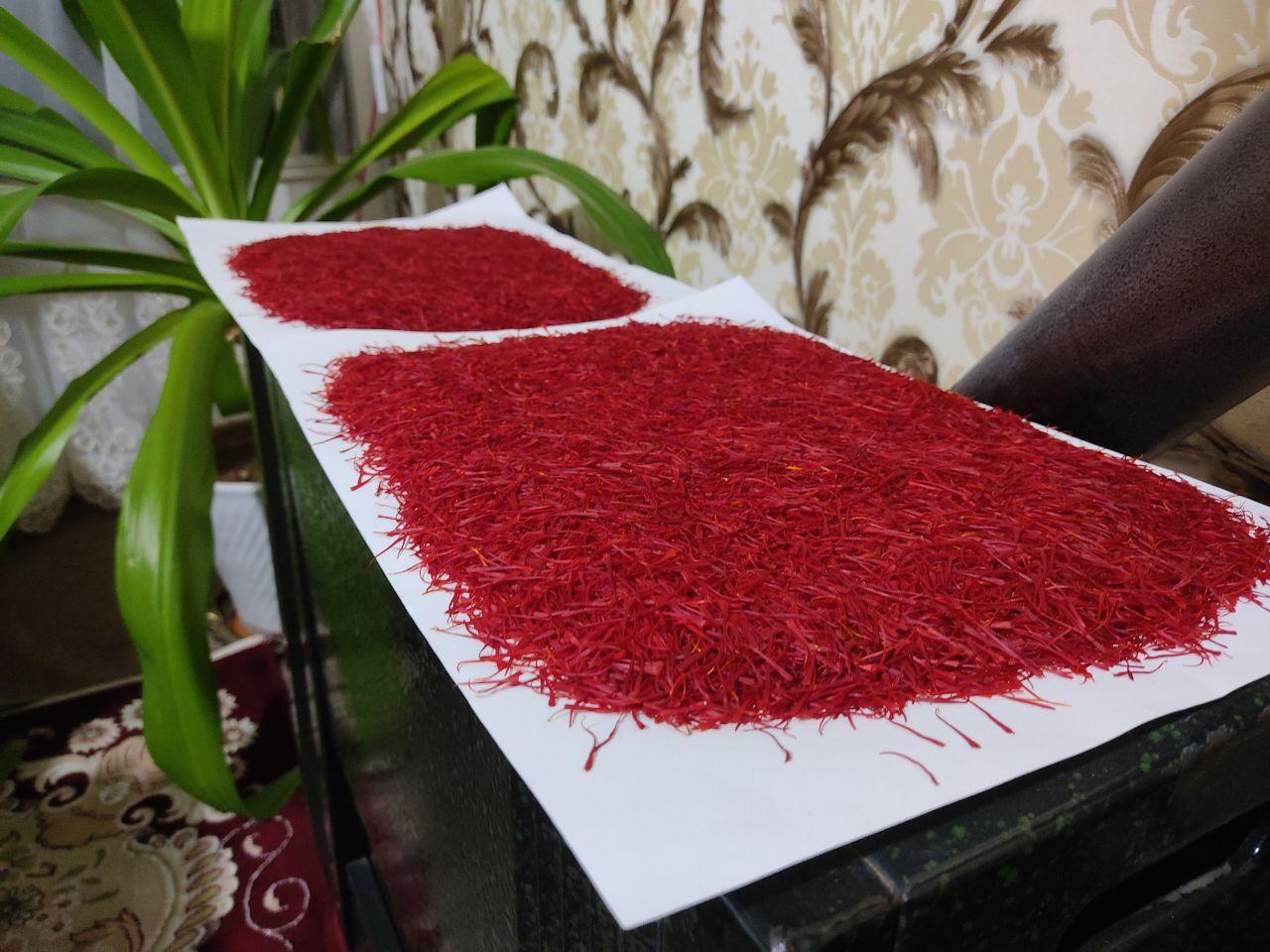 خشک کردن زعفران بر روی بخاری