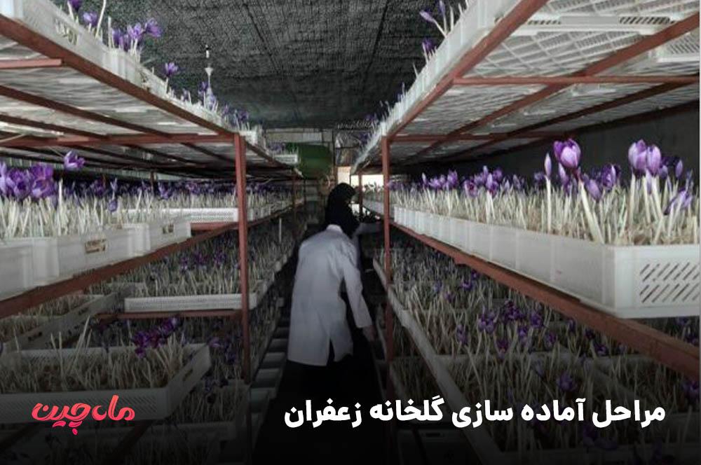 مراحل آماده سازی گلخانه زعفران