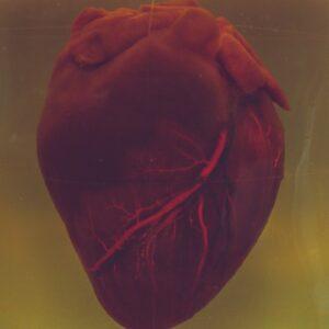 خواص زعفران برای فشار خون