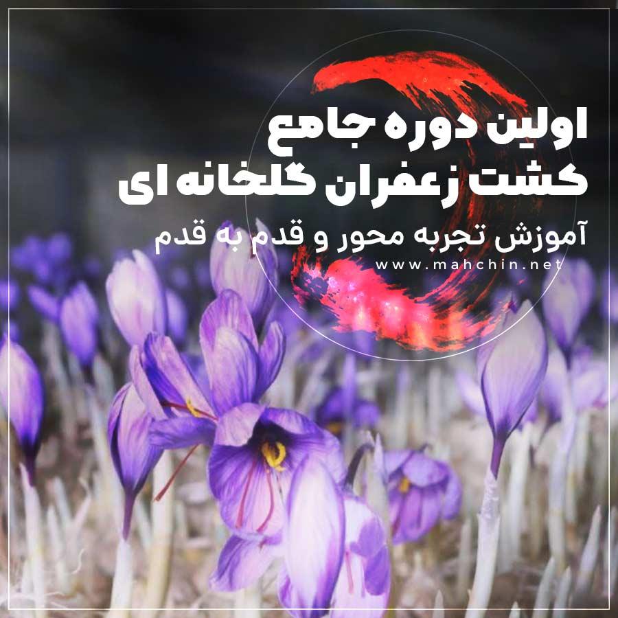 دوره آموزشی جامع کشت گلخانه ای زعفران