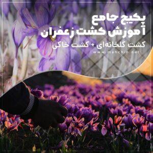 پکیج جامع آموزش کشت زعفران